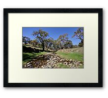 Willawong Creek  Rural NSW  Australia  Framed Print