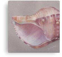Pink Shell Canvas Print