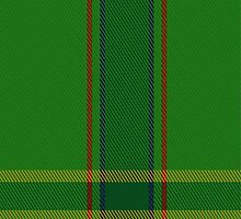01596 ASDA Wal-Mart Tartan Fabric Print Iphone Case by Detnecs2013