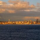 Seattle In Gold...Seattle, Washington by trueblvr