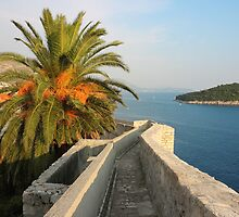 Dubrovnik Fortress Wall Seaview by kirilart