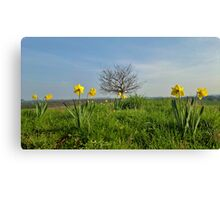 Shropshire in Spring Canvas Print