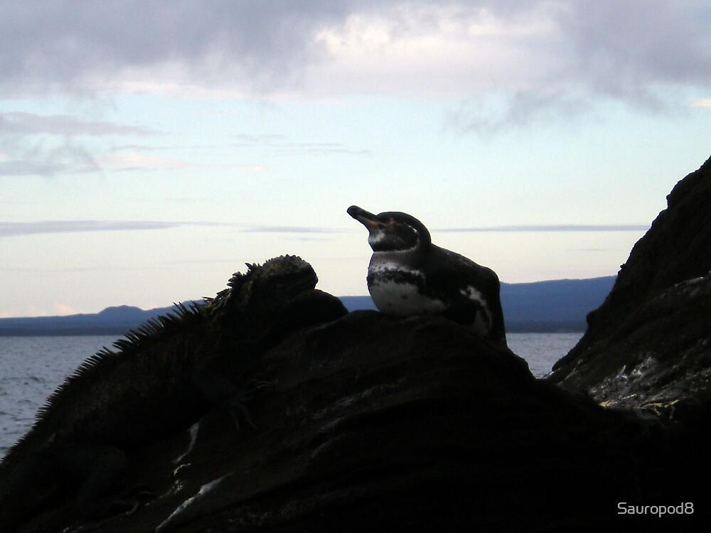 Marine Iguana vs. Galapagos Penguin by Sauropod8