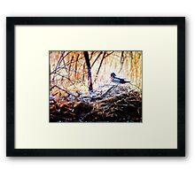 Duck on Some High Water Debri Framed Print