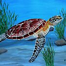 Sea turtle  by maggie326