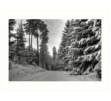 Winter in Forsheda's track II Art Print