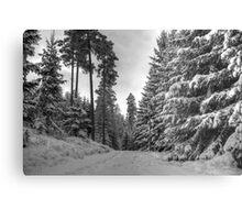 Winter in Forsheda's track II Metal Print