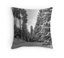 Winter in Forsheda's track II Throw Pillow