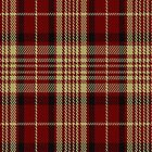 01607 Austin College Page Tartan Fabric Print Iphone Case by Detnecs2013
