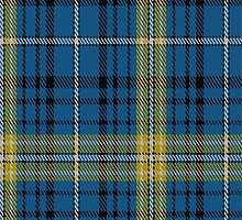01616 Avalon - Carroll House Tartan Fabric Print Iphone Case by Detnecs2013