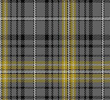 01618 Avalon - Washington House Tartan Fabric Print Iphone Case by Detnecs2013