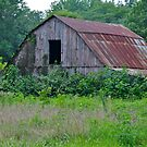 Another Old Barn (3) by michaelasamples