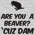 Are you a Beaver? Cuz Dam by RexLambo