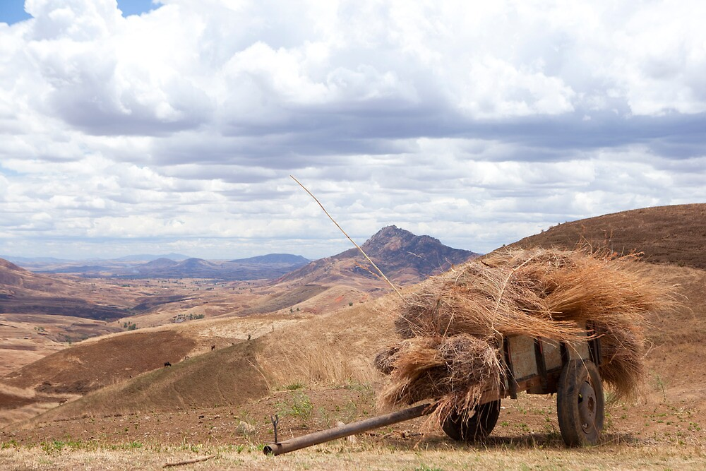 Hay Cart.... With a View by CharlotteMorse