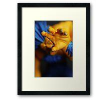 GRAB Framed Print