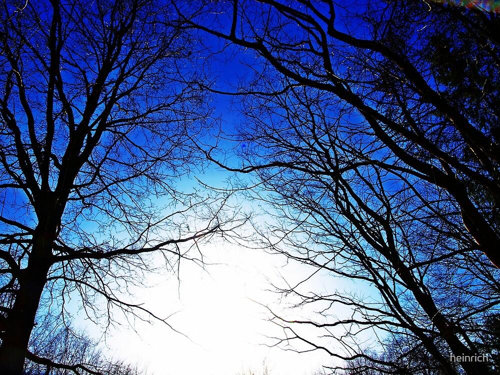 High skies in deep blue by heinrich