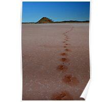 Footsteps Lake Ballard WA Poster