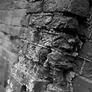 Rugged Brick Wall by Paul Berry