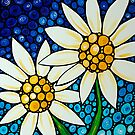 Bathing Beauties Colorful Daisy Art By Sharon Cummings by Sharon Cummings
