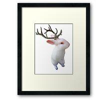 Jackolope Framed Print