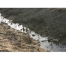ML - Flowing Ditch Photographic Print