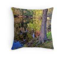 Bluffton, South Carolina Throw Pillow