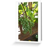 Do Grapes Dream of Becoming Wine?... Greeting Card