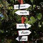 Directions From The Yucatan Peninsula, Mexico by Sauropod8