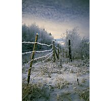 Frosty Fence Photographic Print