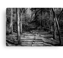 Stairs to wherever Canvas Print