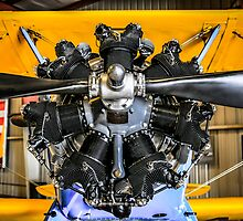 Radial Engine on a PT17 Stearman bi-plane by Chris L Smith