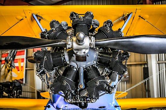 Radial Engine on a PT17 Stearman bi-plane by Chris L Smith