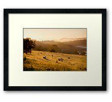 Golden Mist by Smart Imaging Framed Print