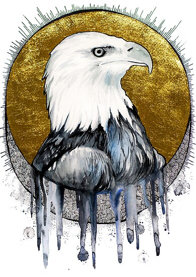 Bald eagle by Slaveika Aladjova