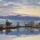 Winter Reflections by Jeanie