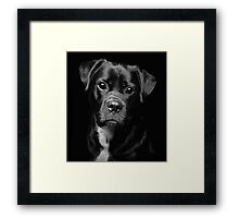 A Loveable Face by Smart Imaging Framed Print