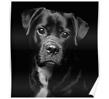 A Loveable Face by Smart Imaging Poster