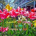 Tulip Friends by Susan S. Kline