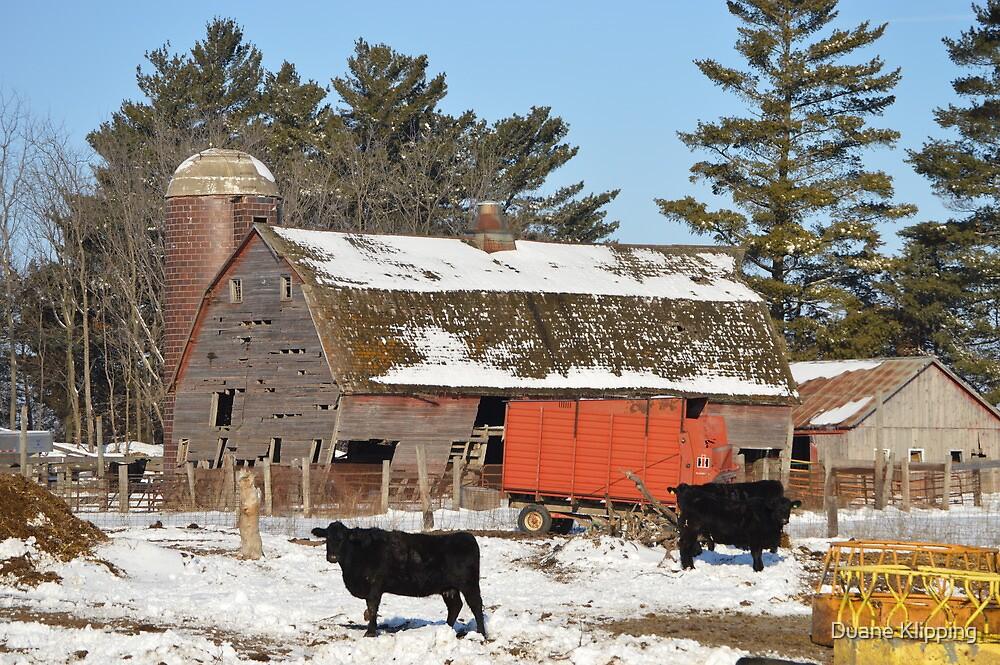 The Winter Barnyard by Duane Sr