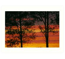 Sunrise trees Art Print