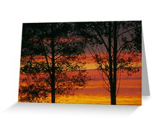 Sunrise trees Greeting Card
