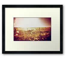 Autumn Roo Framed Print