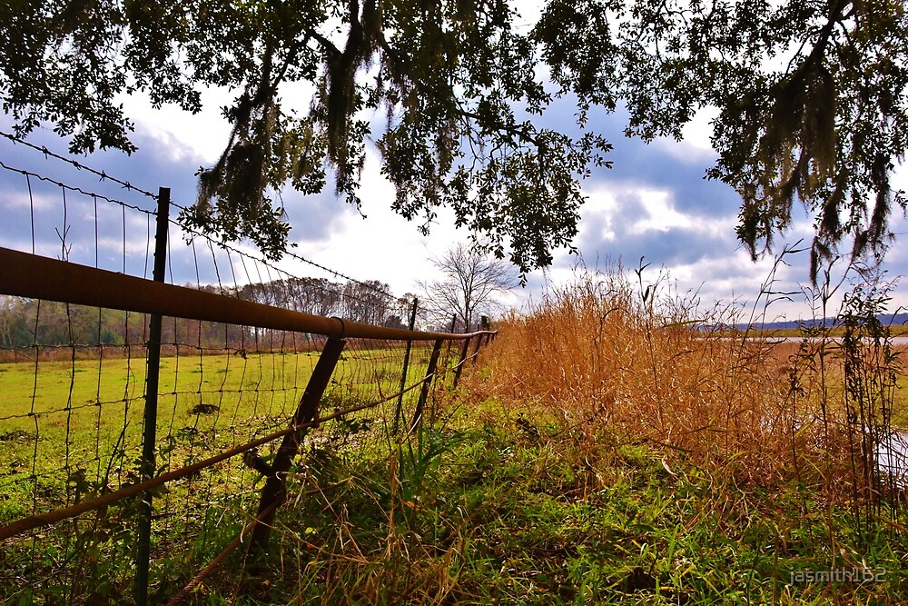 Country Fence by jasmith162