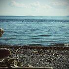 A Stroll At The Seashore by capturedbykt