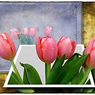 Tulip rendering by Olga