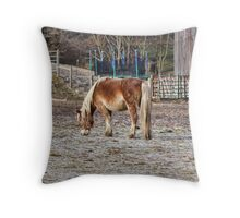 In no big hurry Throw Pillow