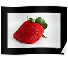 Fragaria x Ananassa - Fresh Garden Strawberry Poster