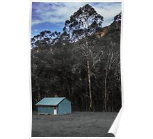 The Little Blue House, Newnes Poster