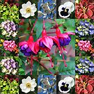 Vibrant Flowers Collage by Kathryn Jones