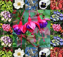 Vibrant Flowers Collage by kathrynsgallery